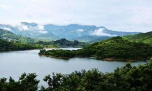 安徽省人大常委会视察组到太湖县视察乡镇生活污水建设运营情况