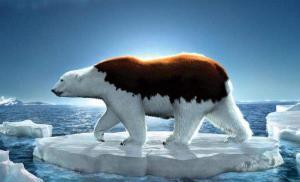 中国应对气候变化的政策与行动2019年度报告》正式发布