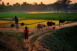 中孟企业联合体中标孟加拉国水务项目