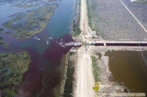 含毒有机废水进行生物处理的预处理方法